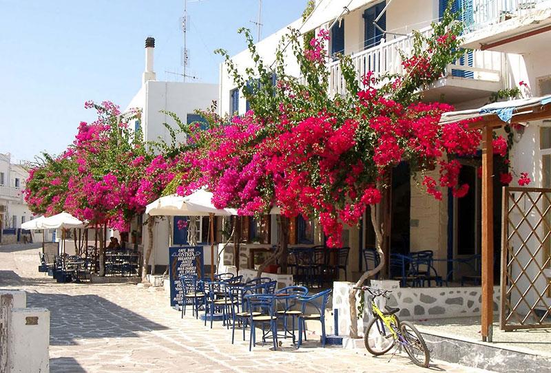 Pavlos Place Antiparos